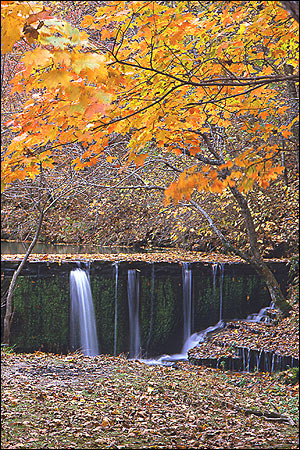 withrow_springs_002_l